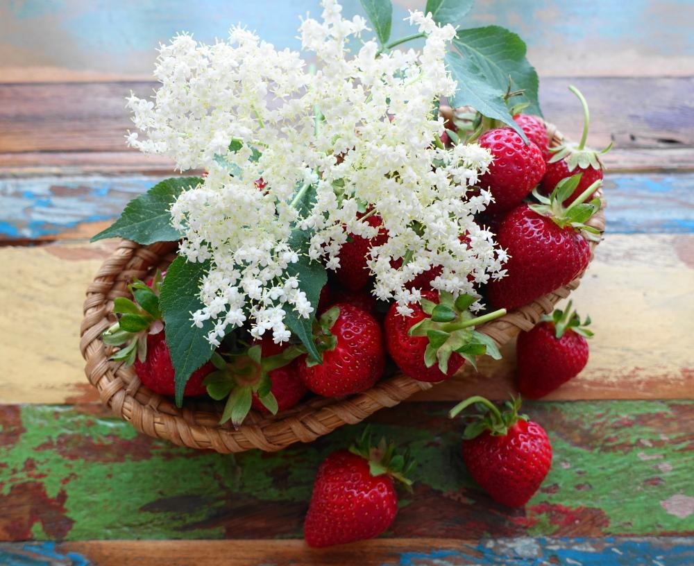 Erdbeeren und Holunder