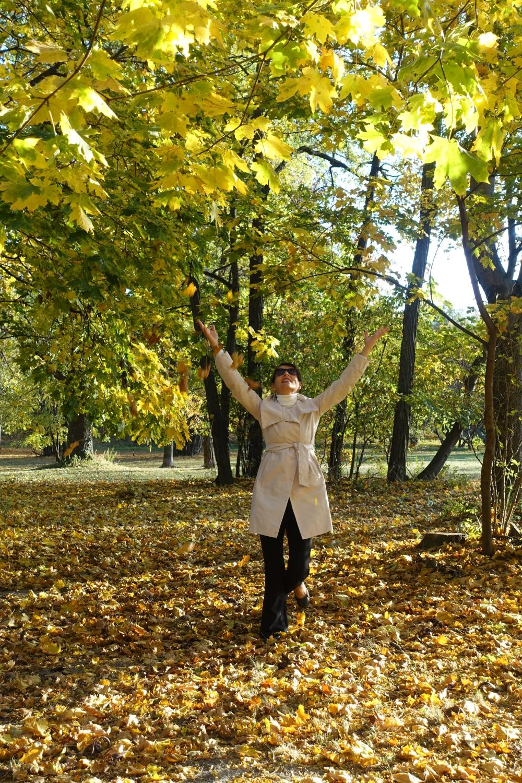 Laubregen, fallende Blätter, gefallene Blätter, Wiener Prater, der grüne Prater, Wien, Spaziergang im Herbst, Ahorn, Herbst-Inspiration, herbstlicher Wald, gülden