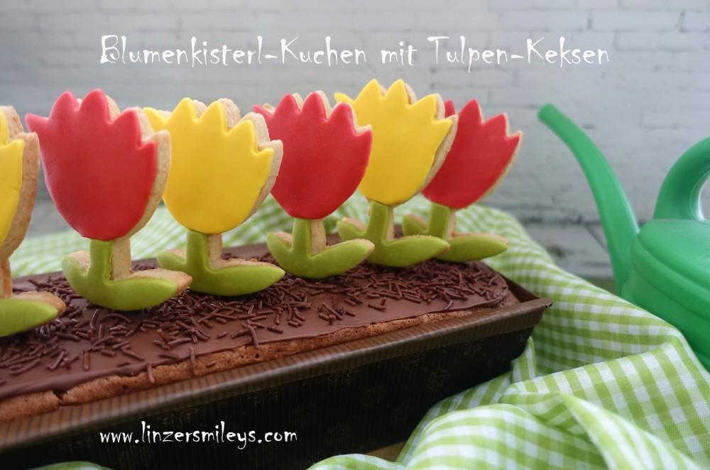 Blumenkisterlkuchen mit Keksen am Stiel, Kekslollis, kreativ, DIY, Geschenkidee, Mitbringsel, Gastgeschenk, selbst gemacht, für jeden Anlass, süße Blumen, zum Verschenken, Rezeptidee von Daniela Terenzi, #linzersmileys
