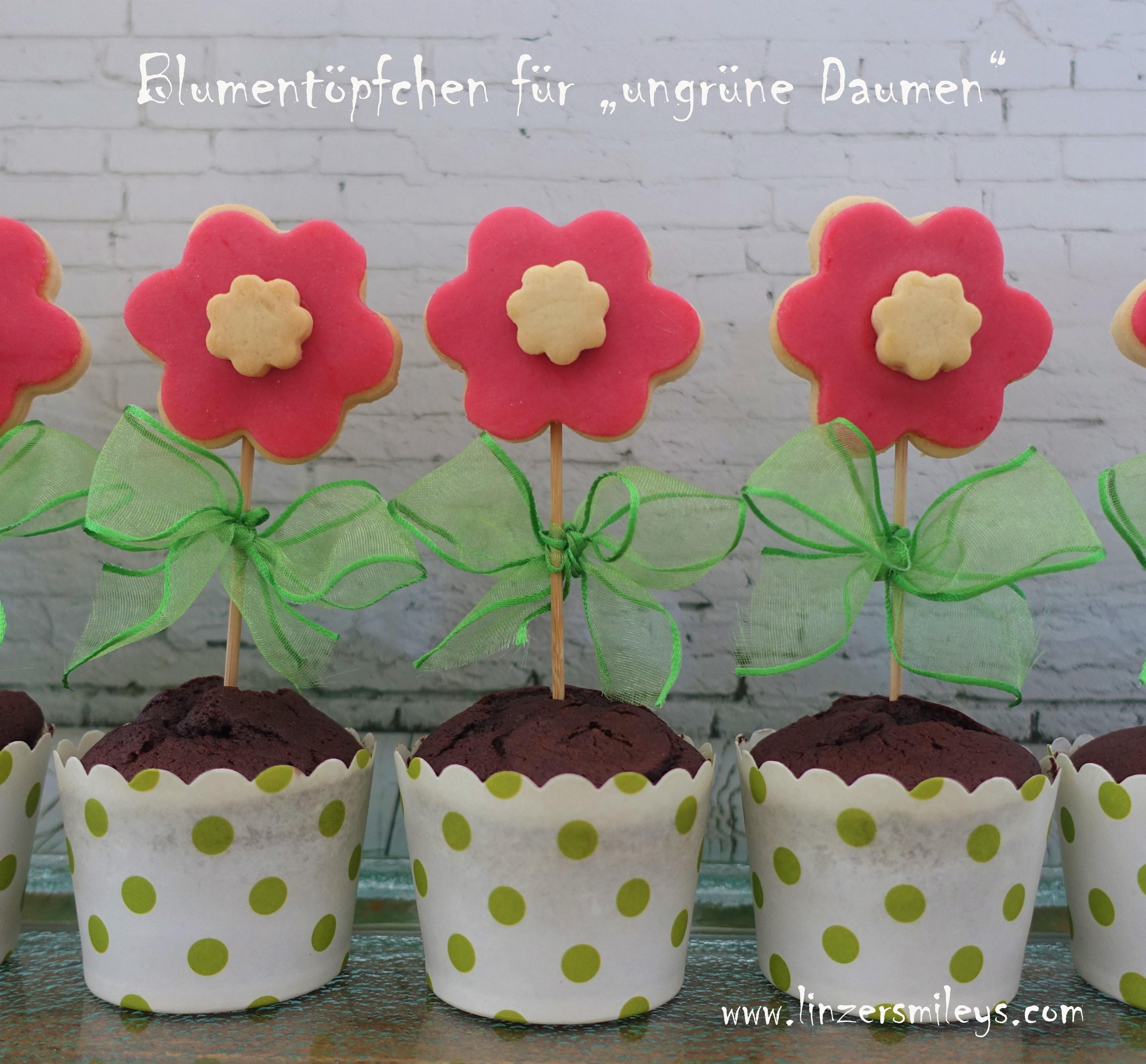 Süße Blumentöpfchen mit Keksen am Stiel, Kekslollis, kreativ, DIY, Geschenkidee, Mitbringsel, Gastgeschenk, selbst gemacht, für jeden Anlass, süße Blumen, zum Verschenken, Rezeptidee von Daniela Terenzi, #linzersmileys Schokomuffins als Blumentöpfchen