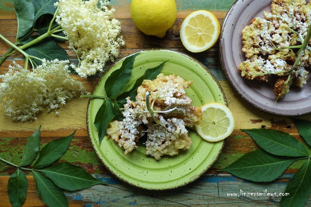 Holunderblüten, Holunderblütendolden, Holler, für gebackene Hollerstrauben, Frühling, österreichisch kochen wie zu Omas Zeiten, gebackene Mehlspeisen, frittiert, süß und köstlich, mit Zitrone und Buttermilch