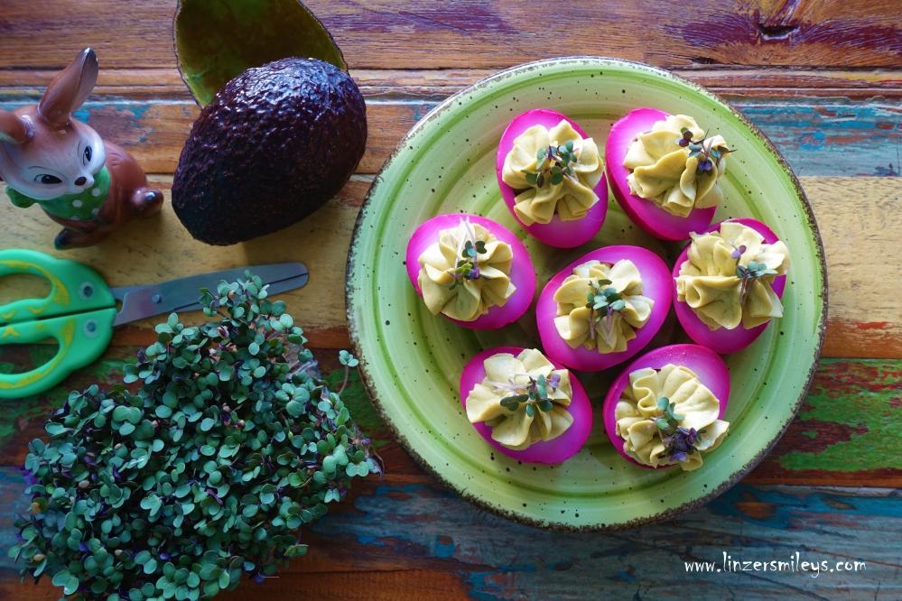 Purple Pickled Eggs, Deviled Eggs, teuflische eier, teuflisch rüben-rote Ostereier, gefüllte Eier, eingelegte Eier, violett, natürlich gefärbte Ostereier, Partykracher, rübenrot, Rote-Rüben-Salat, Rote Bete, Raunen, Runkeln, mit Avocado-Mayo #linzersmileys